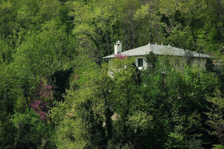 Tessera-Architects-Pilio-09